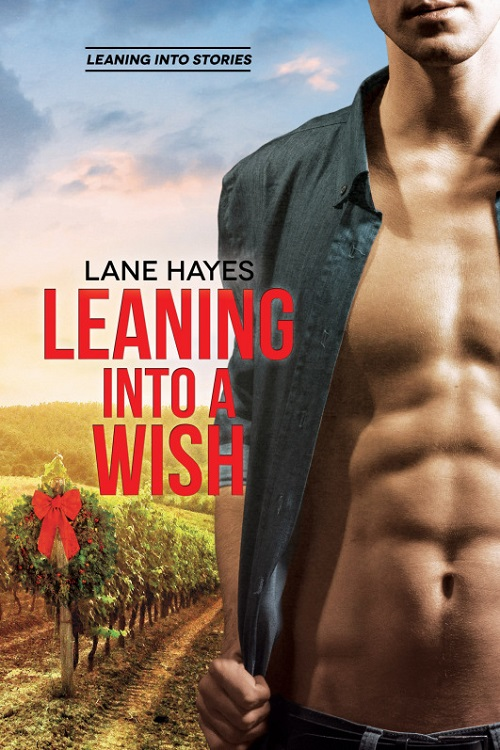 Leaning Into a Wish by Lane Hayes Release Blast, Excerpt & Giveaway!