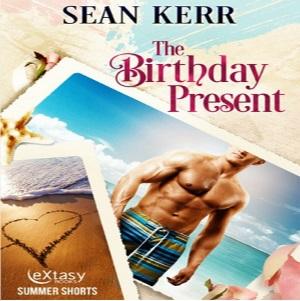 The Birthday Present by Sean Kerr