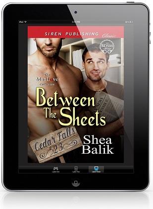 Between the Sheets by Shea Balik