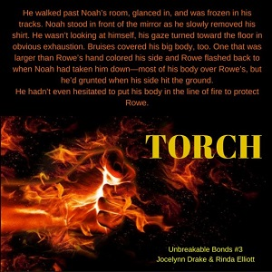 Torch by Jocelynn Drake & Rinda Elliott