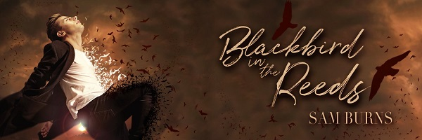 Blackbird In The Reeds by Sam Burns Blog Tour, Excerpt, Review & Giveaway!