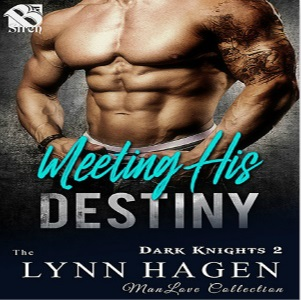 Meeting His Destiny by Lynn Hagen