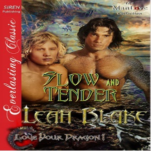 Slow and Tender by Leah Blake