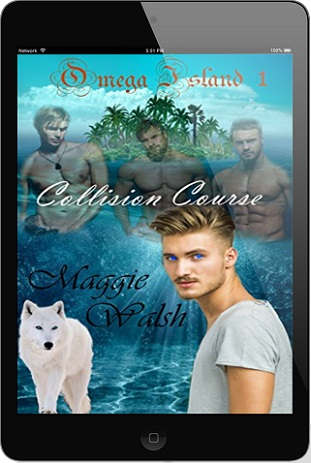Collision Course by Maggie Walsh