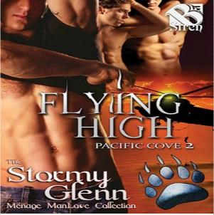 Flying High by Stormy Glenn