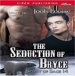 The Seduction of Bryce by Jools Louise