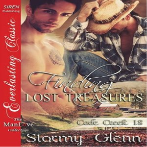 Finding Lost Treasures by Stormy Glenn