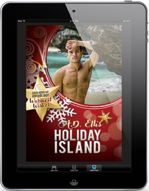 Holiday Island by A.D. Ellis