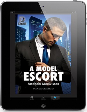 A Model Escort by Amanda Meuwissen Guest Post & Excerpt!