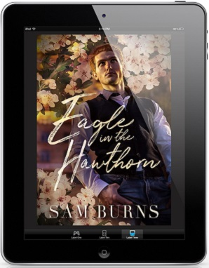 Eagle In The Hawthorn by Sam Burns Release Blast & Giveaway!