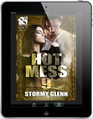 Hot Mess 9 by Stormy Glenn