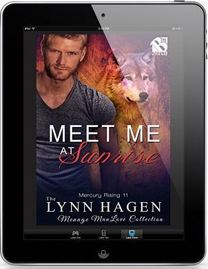 Meet Me At Sunrise by Lynn Hagen
