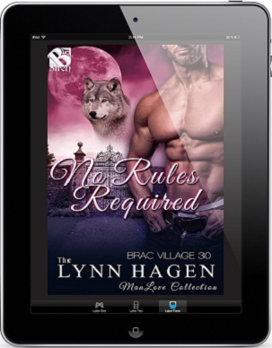 No Rules Required by Lynn Hagen