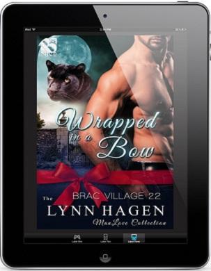Wrapped in a Bow by Lynn Hagen