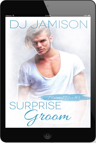 Surprise Groom by D.J. Jamison Release Blast, Excerpt & Giveaway!