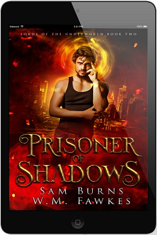 Prisoner of Shadows by Sam Burns & W.M. Fawkes