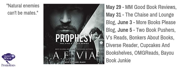 A.E. Via - Prophesy tourgraphic-38