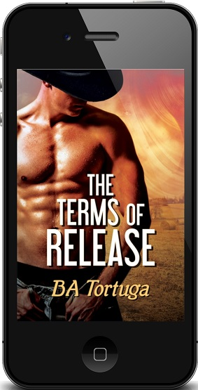 B.A. Tortuga - Terms of Release 3d Audio Cover 238y4t