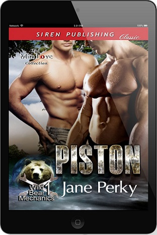 Piston by Jane Perky
