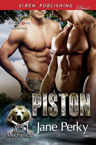 Jane Perky - Piston Cover 3472jn