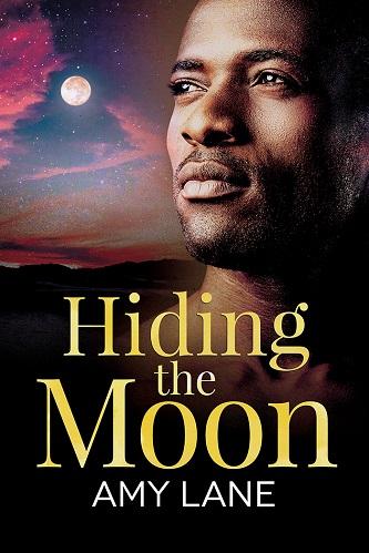Amy Lane - Hiding The Moon Cover hen47