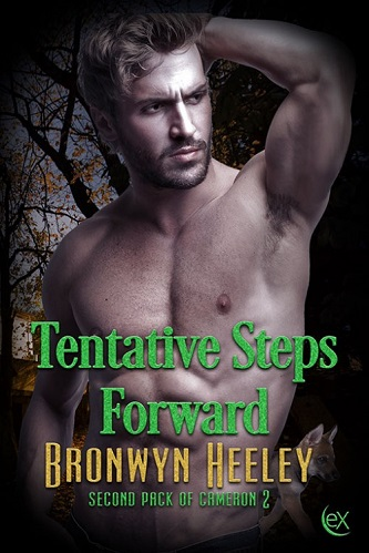 Bronwyn Heeley - Tentative Steps Forward Cover j4k03