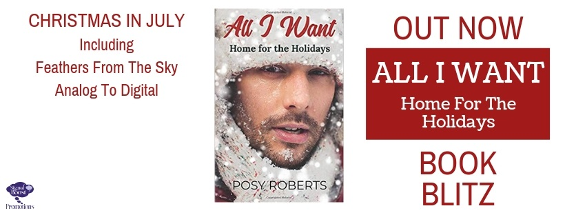 Posy Roberts - All I Want - Home For The Holidays BBBANNER-4