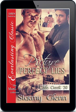 Picture Perfect Lies by Stormy Glenn