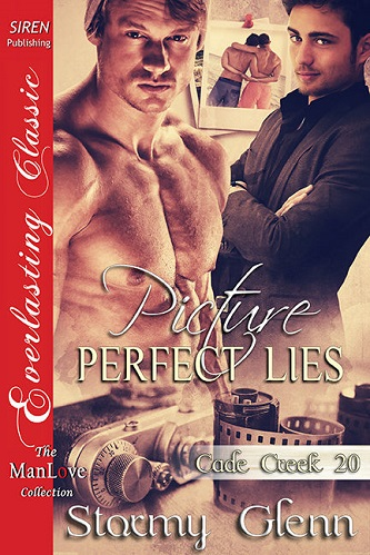 Stormy Glenn - Picture-Perfect Lies Cover 453gth