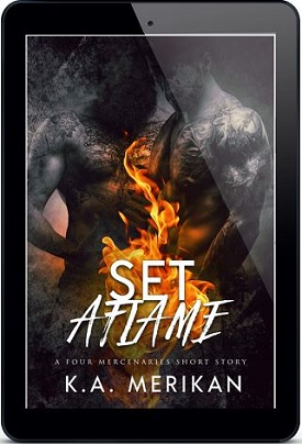 K.A. Merikan - Set Aflame 3d Cover fe52m s