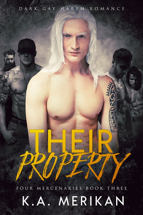 K.A. Merikan - Their Property Cover 8nwzr