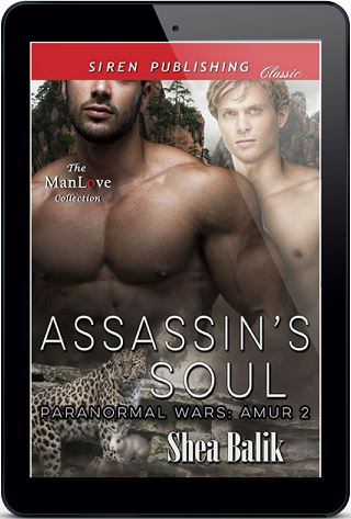 Assassin's Soul by Shea Balik