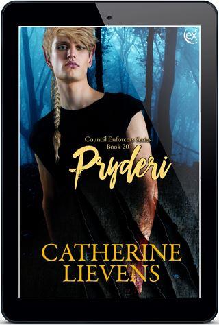 Pryderi by Catherine Lievens