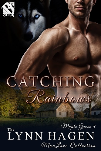 Lynn Hagen - Catching Rainbows Cover rtn473