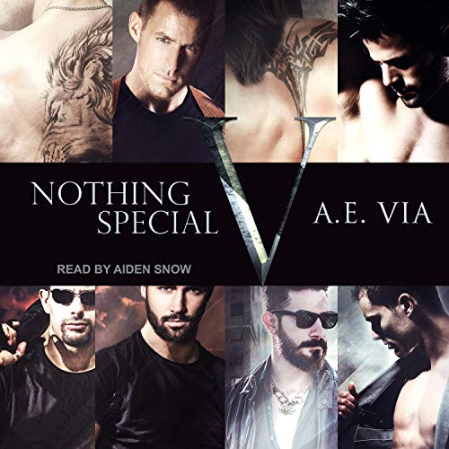 A.E. Via - Nothing Special V Audio Cover nty373