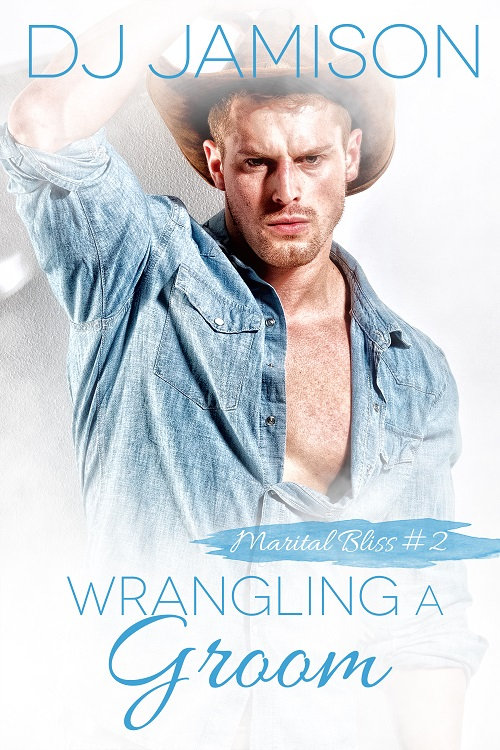 D.J. Jamison - Wrangling the Groom Cover 45bh