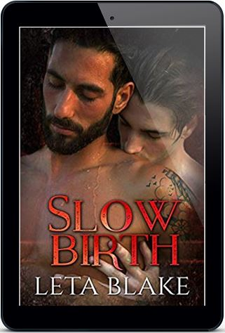 Slow Birth by Leta Blake Release Blast, Excerpt & Giveaway!
