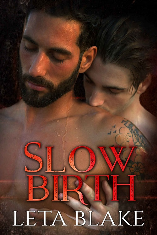 Leta Blake - Slow Birth Cover nb34hj