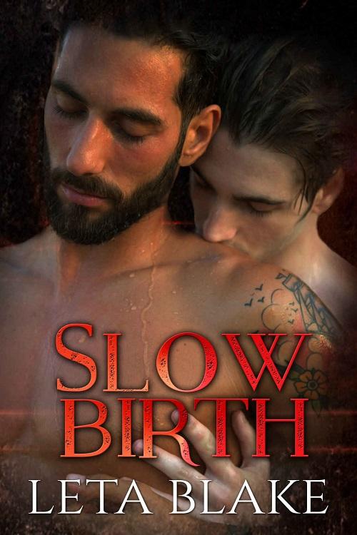 Leta Blake - Slow Birth Cover nb34hj