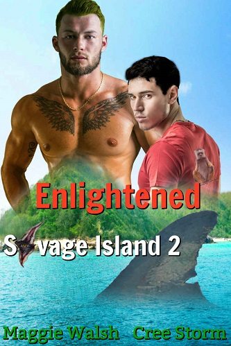 Maggie Walsh & Cree Storm - Enlightened Cover ns7rp0