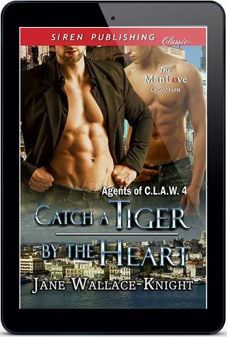 Catch a Tiger by the Heart by Jane Wallace-Knight