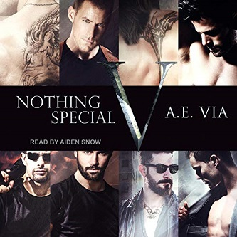A.E. Via - Nothing Special V Audio Cover s nty373