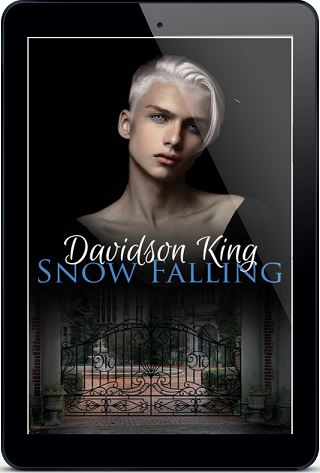 Snow Falling by Davidson King