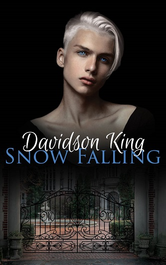 Davidson King - Snow Falling Cover 346yhf