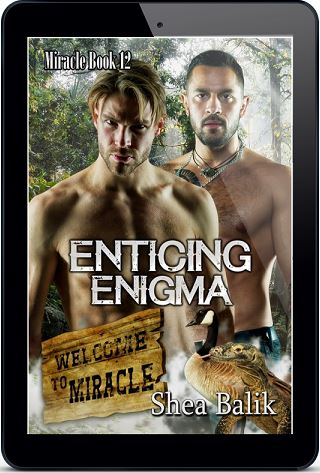 Enticing Enigma by Shea Balik Release Blast, Excerpt & Giveaway!