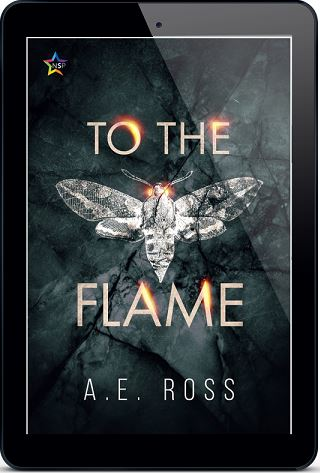 To the Flame by A.E. Ross Release Blast, Excerpt & Giveaway!