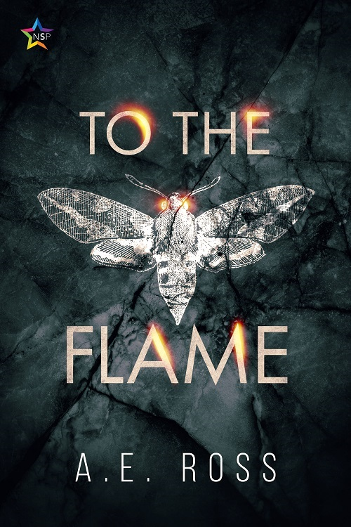 A.E. Ross - To the Flame Cover 48jf7fh