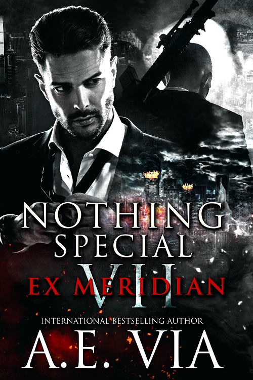 A.E. Via - Nothing Special VII - EX Meridian Cover 347jdnn