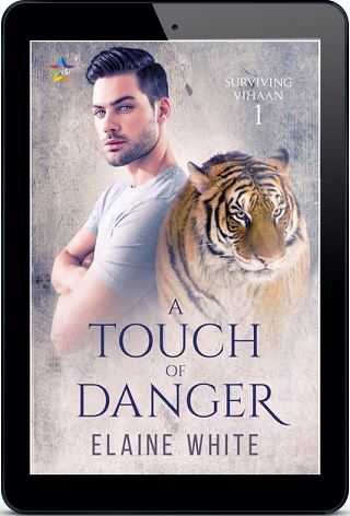 A Touch of Danger by Elaine White Release Blast, Excerpt & Giveaway!