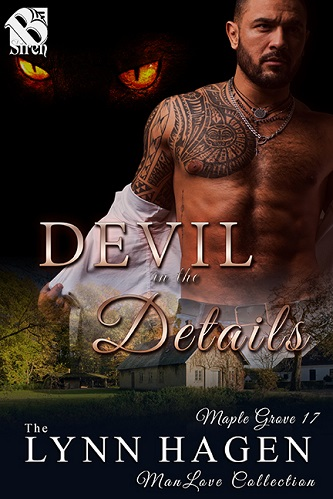 Lynn Hagen - Devil In the Details Cover 475jr9